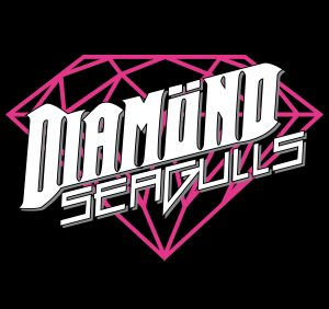 Logo Diamond Seagulls _schwarz